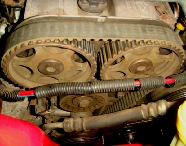 Замена ремня грм на форд мондео 25 своими руками